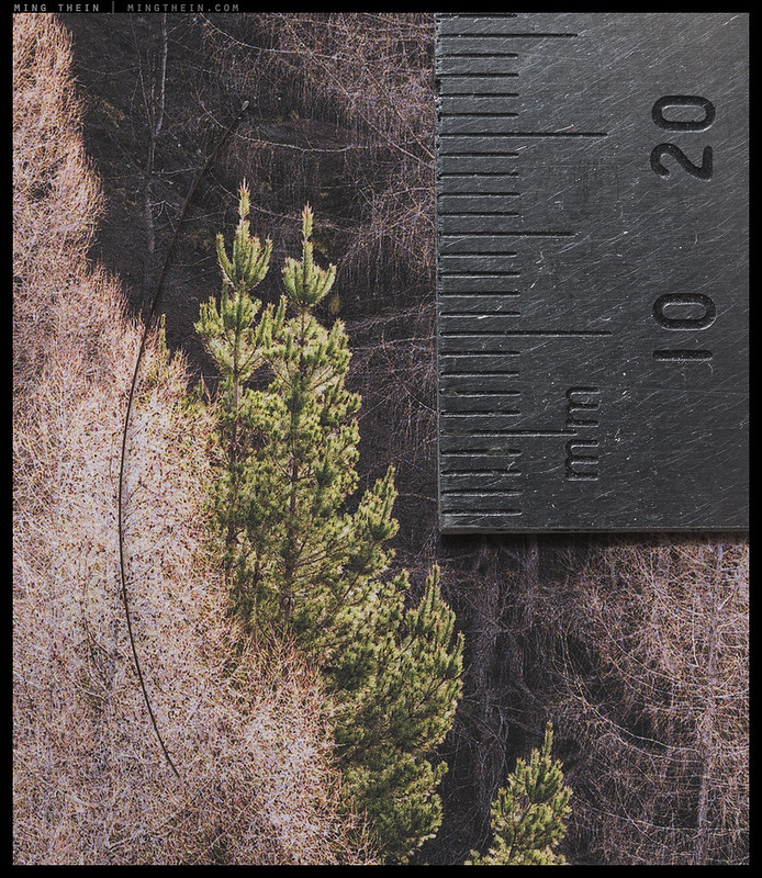 _8B07018 - for scale, black thing is human hair