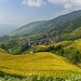 Ping'an rice terraces panorama
