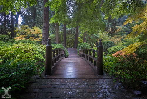 bridge autumn usa oregon digital garden portland japanese nikon blending d810 nikkor1424mmf28