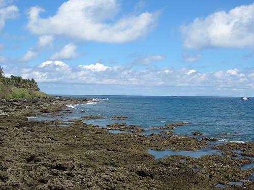 台東縣三仙台珊瑚礁生態環境極度惡化。(台灣珊瑚礁學會提供,鄭明修攝。)