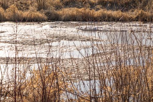 ice saskatoon saskatchewan canada ca