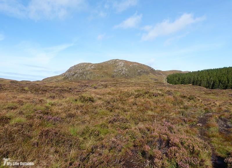 P1090758 - 'S Airde Beinn, Isle of Mull