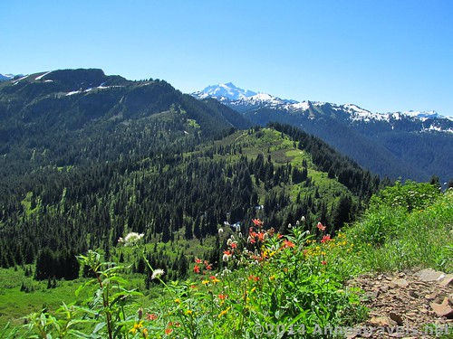 The American Cascades are also visible from the Canyon Ridge Trail, Mt. Baker-Snoqualmie National Forest, Washington