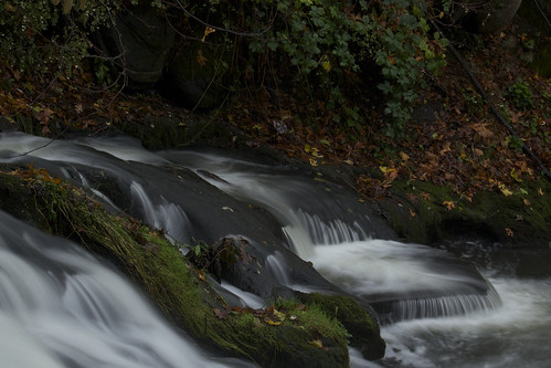park longexposure favorite usa fall water beautiful beauty waterfall washington marine stream bestof tripod salmon falls best falling filter le nd bellingham spawning streaming faved whatcomcounty whatcomcreek neutraldensityfilter explored exporation sooc