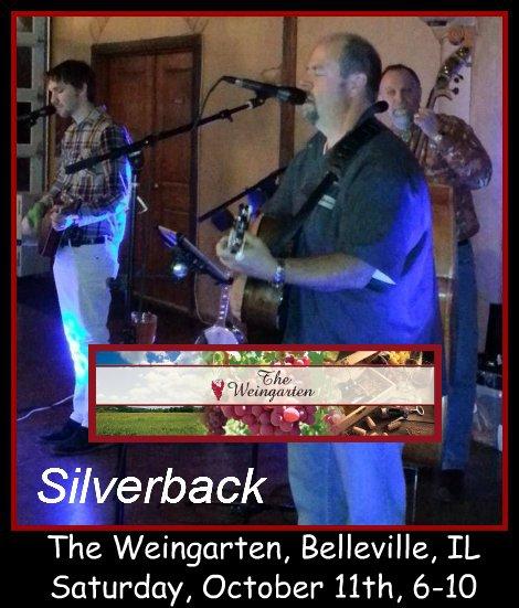 Silverback 10-11-14