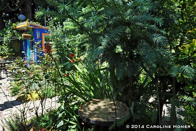 chickadee gardens