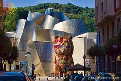 como viajar de Madri a Bilbao