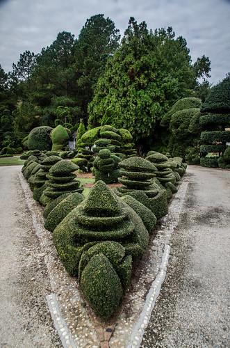 Pearle Fryer Topiary Garden-038