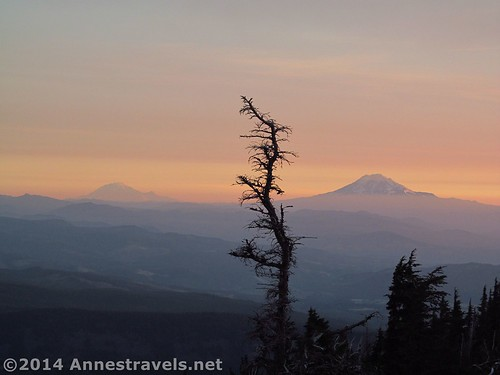 Mt. Rainier and Mt. Adams in the early morning light
