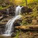 Shawnee Falls by Jaime Dillen-Seibel