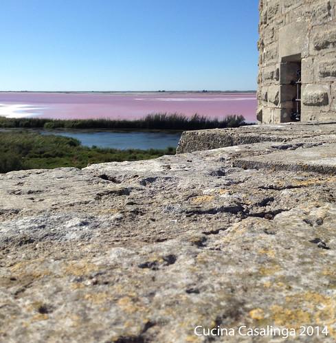 Aigues-Mortes Blick