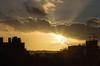 Sun Rays 19 Oct 2014
