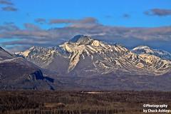 Hatcher Pass Overlook W_7784