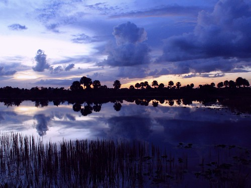 blue sunset usa reflection nature beauty skyscape landscape still bravo darkness unitedstates florida naturallight calm bluehour tranquil cloudscape bluebayou southflorida sawgrass bluegrey lakescape naturalcolor edgeoftown diamondclassphotographer flickrdiamond bocaratonflorida palmbeachcountyflorida naturesspirit steelwater dmslair edgeoffleverglades artisticsunsetphotography lollipoppalms