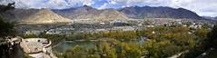 Lhasa - Lhasa - 3