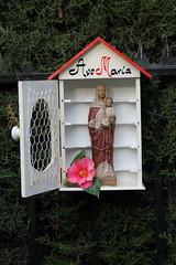 Capillita Virgen