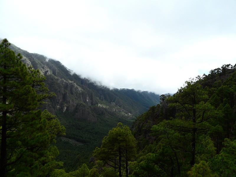 Vacaciones Guela. La Palma. 73 fotos 15489370535_360209aeaa_b