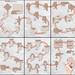 Koi diagrams by Riccardo Foschi