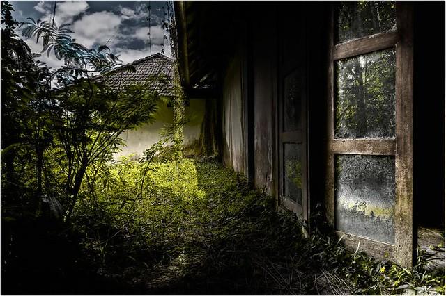 bedugul3-byPietMulder