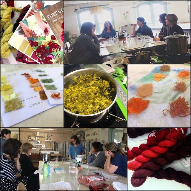 natural dye workshop collage