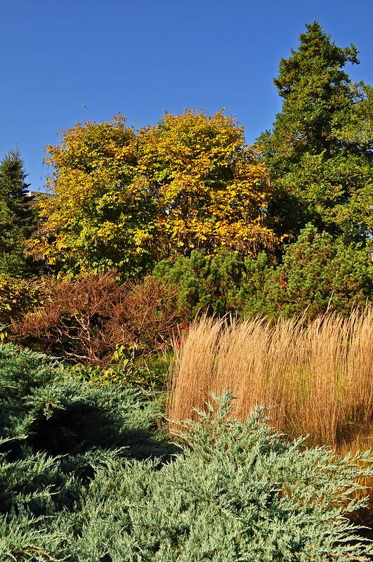 John W. Nason Garden (1)
