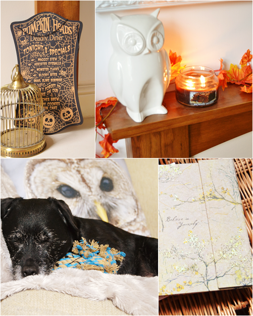 Owl_autumn_decor