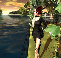 Memoirs of a SecondLife