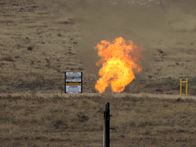 Gas flare in parkland