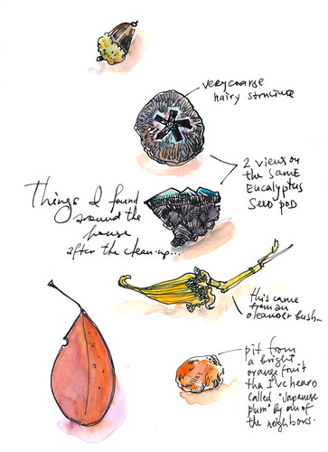 September 2014: Treasures
