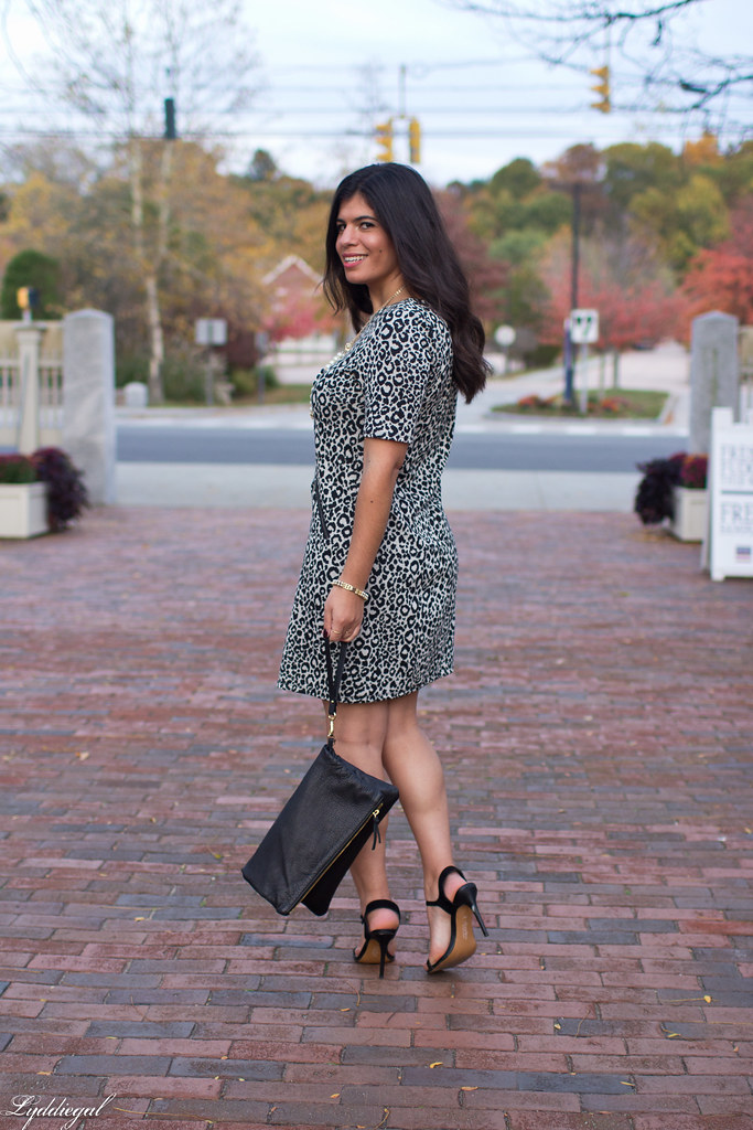 leopard dress, black clutch, black heels-7.jpg