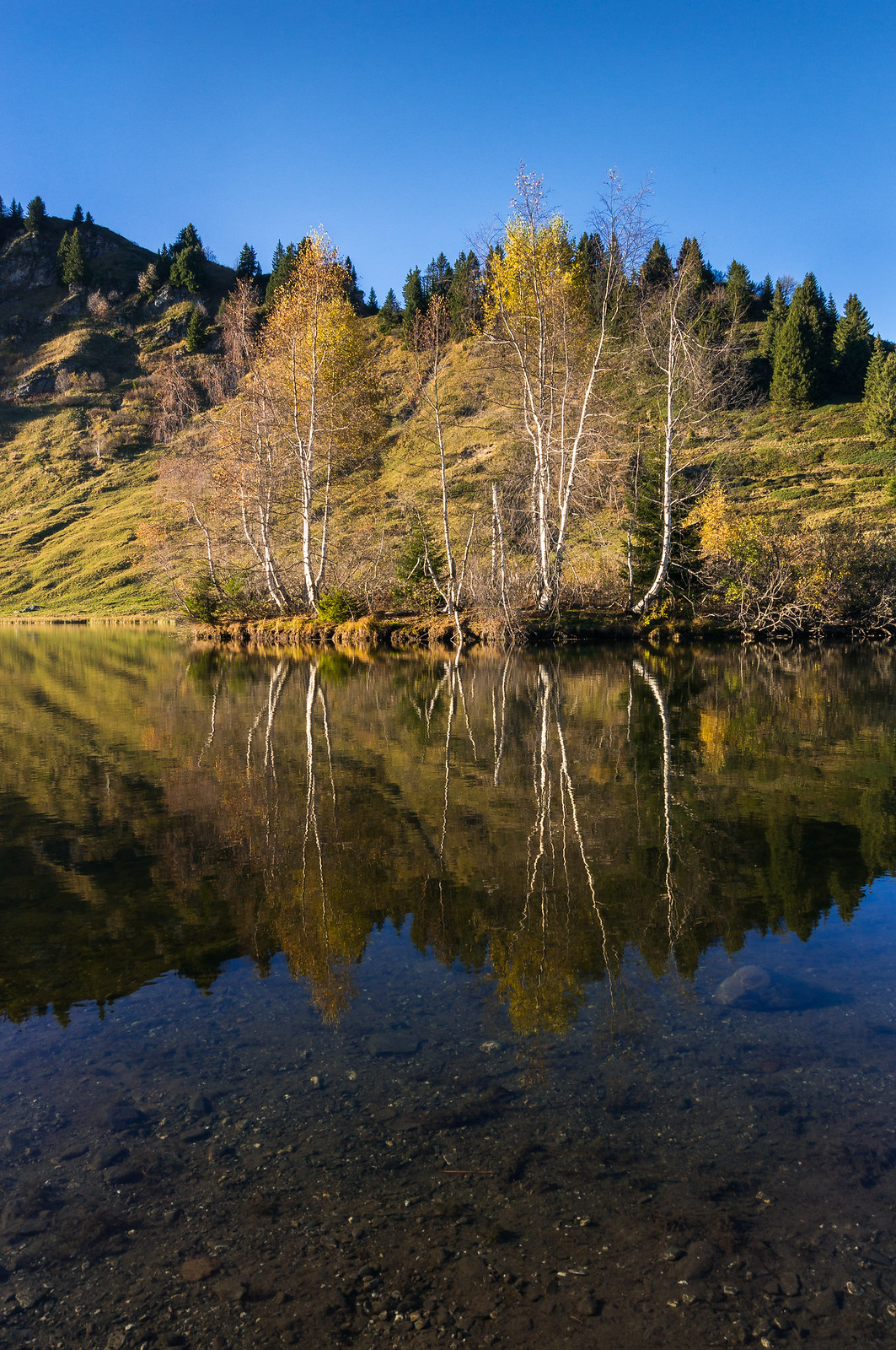Autumn Reflection, French Alps