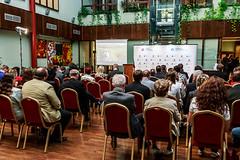 Firma roku 2014 - Zlínský kraj