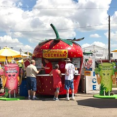 I saw this and thought about a life of travel, just @wvanti and I on the open road, going from one fair to another, selling beverages out of a giant strawberry. Like, independent carnies? Freelance carnies? #floridastrawberryfestival #florida #latergram