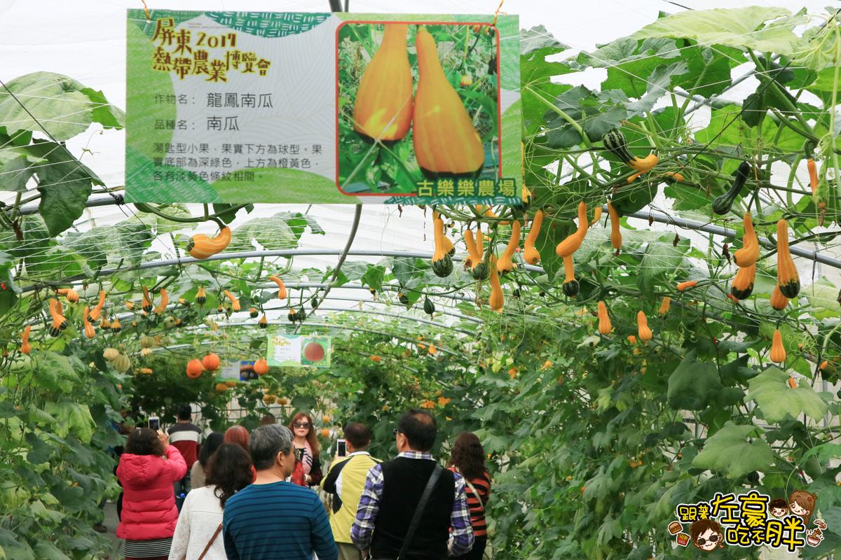 屏東農業博覽會-9