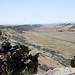 Coyote Ridge_MIN 363_32