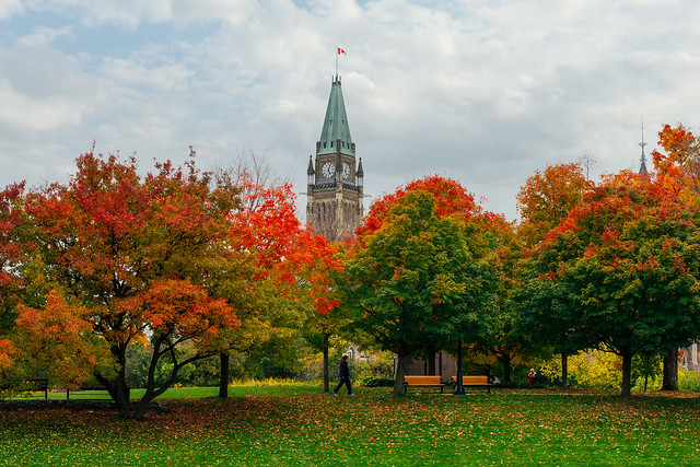 cliché fall parliament.