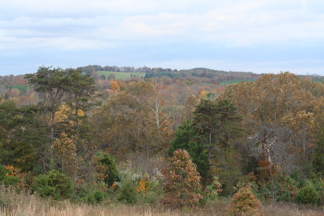 James River State Park Fall 2014 (375)
