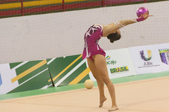 floor gymnastics(0.0), athletics(0.0), heptathlon(0.0), sports(1.0), gymnastics(1.0), gymnast(1.0), artistic gymnastics(1.0), rhythmic gymnastics(1.0), athlete(1.0),