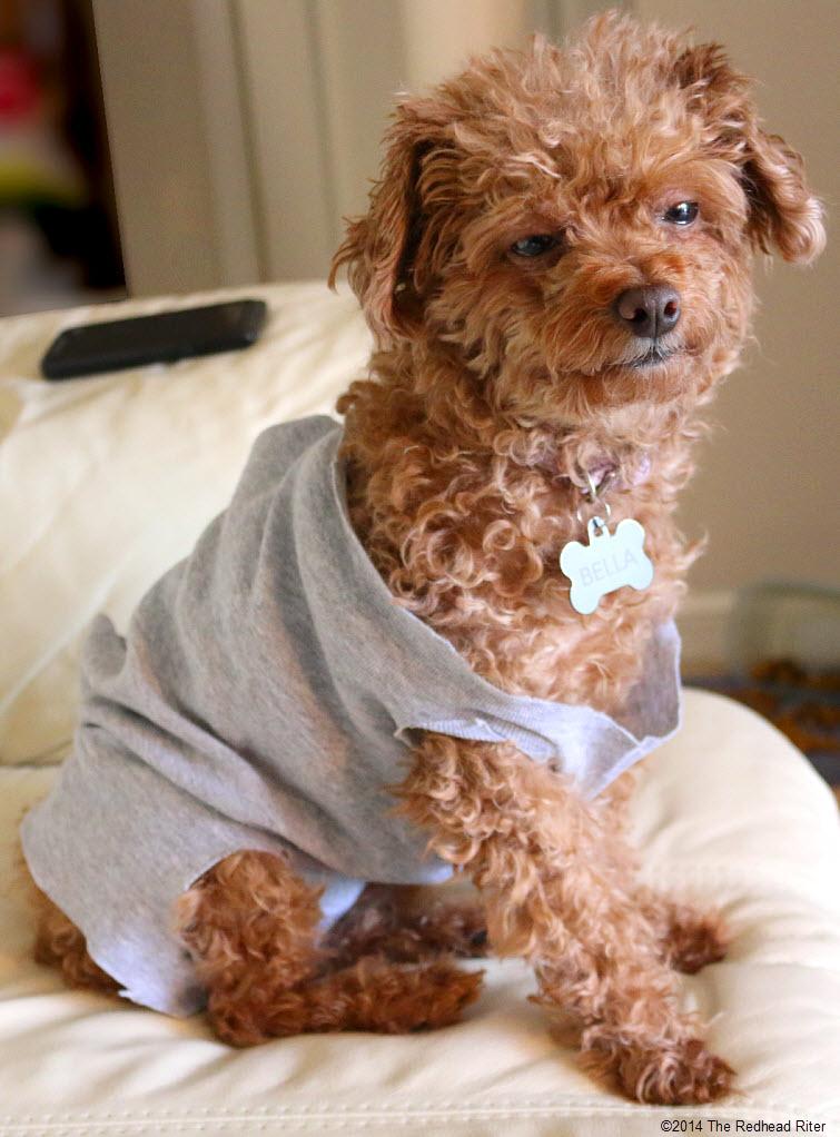 groggy Bella in her Flash Dance shirt