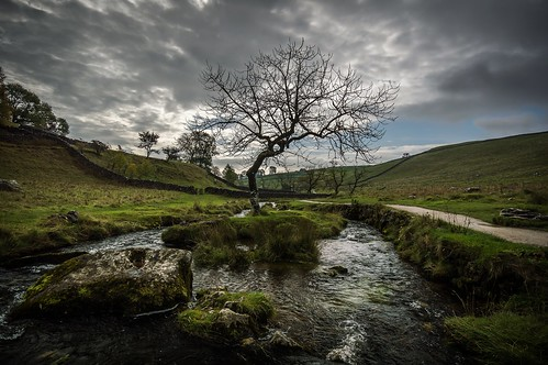 tree grass rock clouds river landscape scenery path cove yorkshire hill aire dales malham