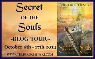 Blog Tour: Secret of the Soul by Terri Rochenski