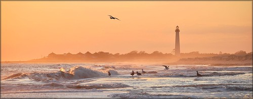 ocean new sunset sea seagulls lighthouse beach waves cove may nj atlantic shore jersey cape