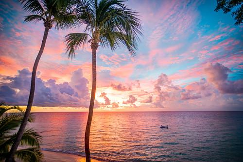 pink blue sunset sea beach clouds palmtrees barbados fairmontroyalpavillion
