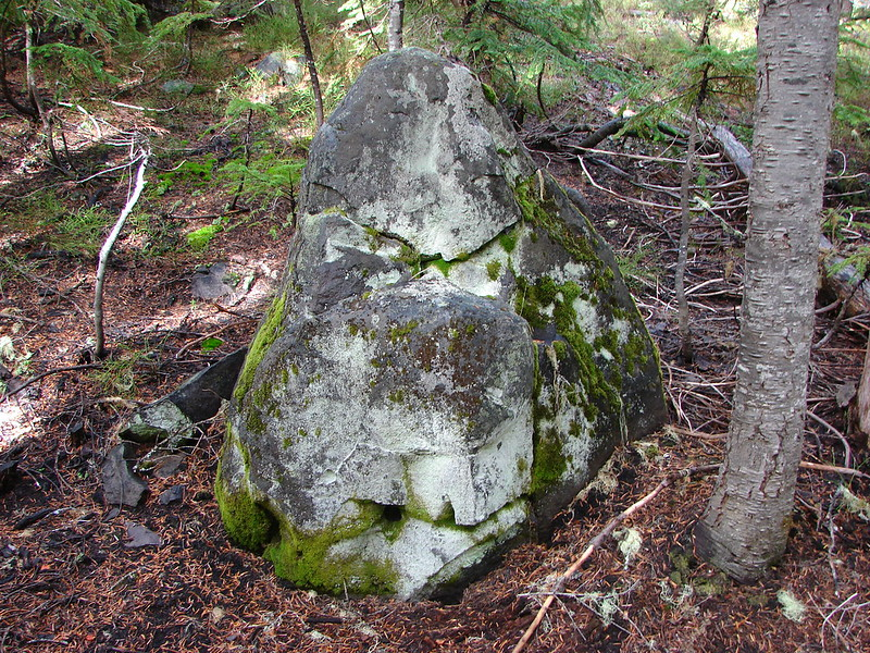 Gorrilla Rock - named by Heather