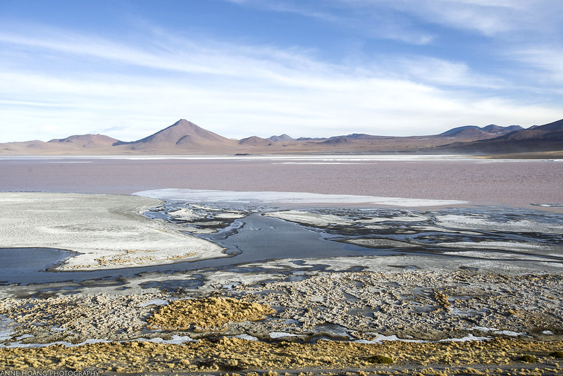 Laguna Colorada - red lake in Bolivia