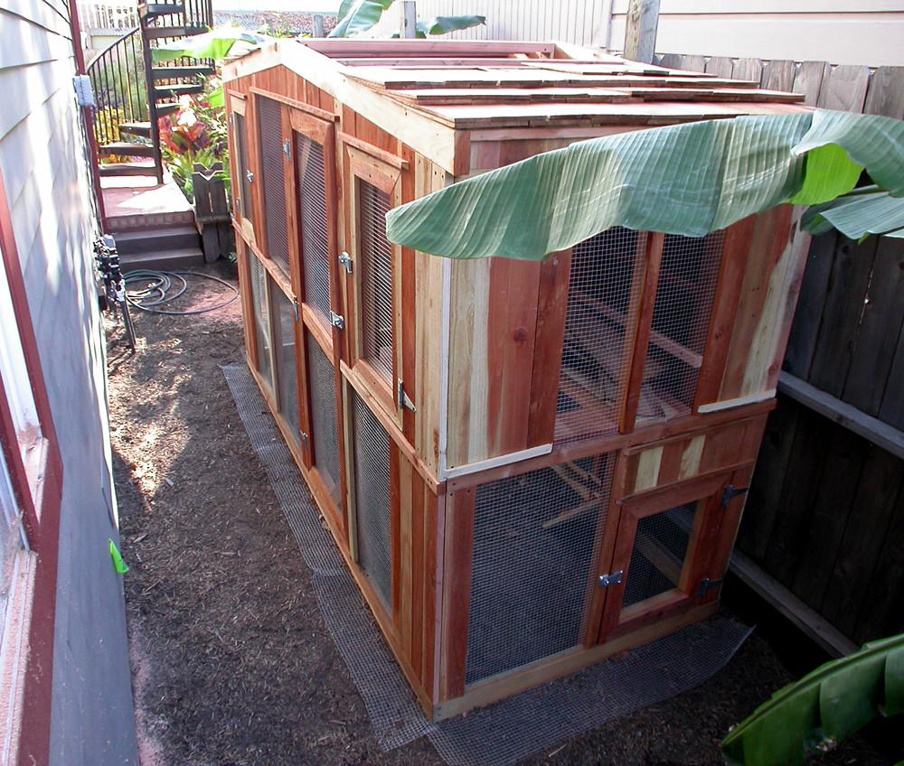 3ft Redwood Flower Planter Box For Windows By Redwoodgardens: Chicken Coop - Alameda Design