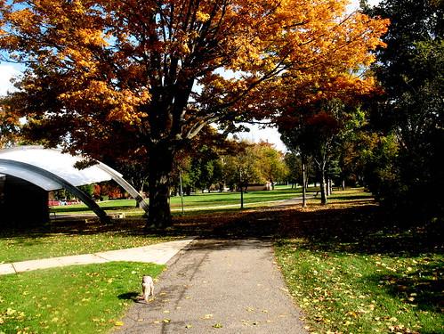 Kollen Park