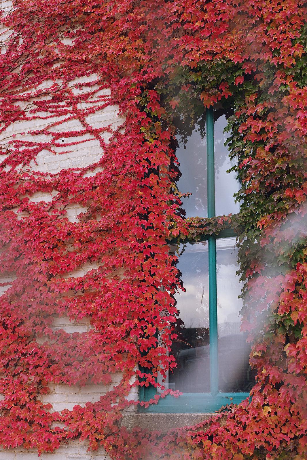 Kisiel-2014-10-17-0064