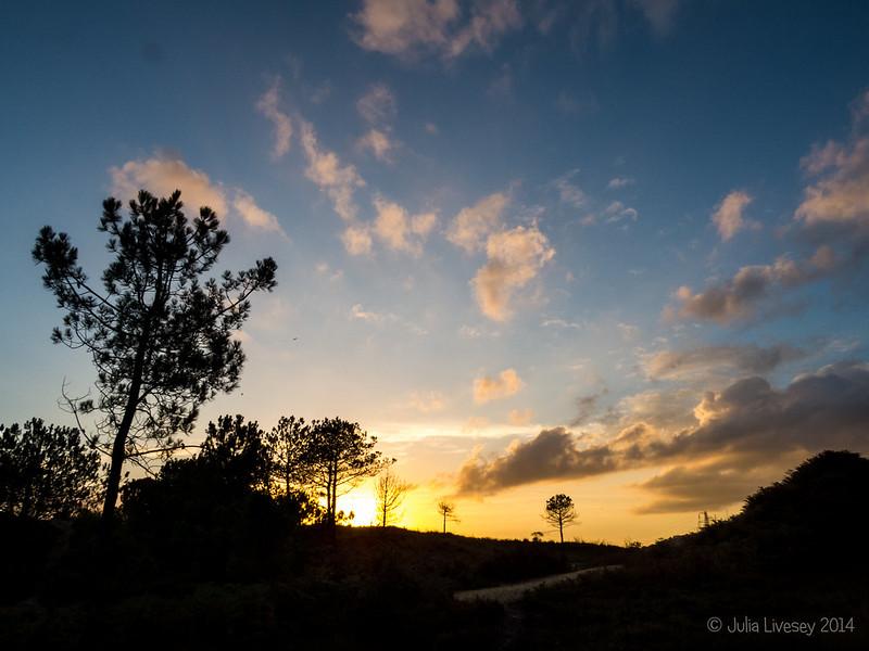 Sunset over Upton Heath