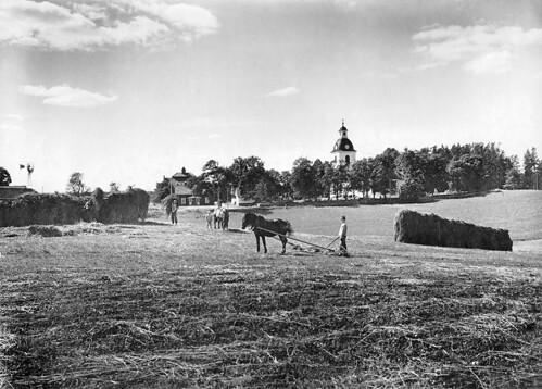 horse field landscape riksantikvarieämbetet theswedishnationalheritageboard
